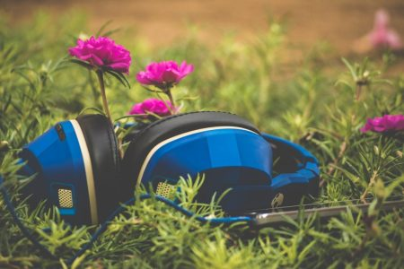 blue headphones on grass